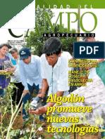 CAMPO - AÑO 12 - NUMERO 142 - ABRIL 2013 - PARAGUAY - PORTALGUARANI