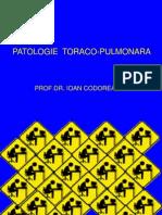 178663575 5 Sindromul Pleural Ppt