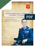 Diario La Prensa Austral. Suplemento Ejército. v División de Ejército. Granela de Ejército Ramón Cañas Montalva. (2014)