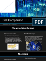 cell comparison powerpoint