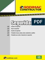 Guiamaestra13 SEGURIDAD