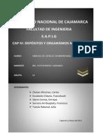 CAP IV- Depositos y Organismos Marinos