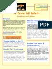 The Calvin Ball Bulletin, Construction Edition November 2014