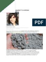 Celulosa biocontruccion