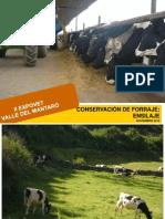 Informe Tecnico Ensilaje- Huancayo