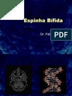 Espinha Bifida-Review