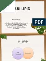 Uji Lipid