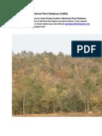 dental regen herbs.pdf