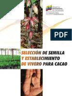 Seleccion Semillas de Cacao