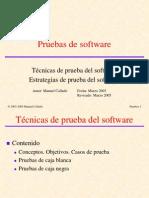 pruebas software.pps