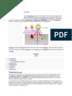 Cell Potency