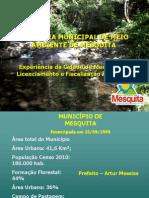 1palestra Inea Licenciamento e Controle Ambiental