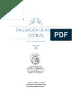 Evaluación de Áreas Críticas
