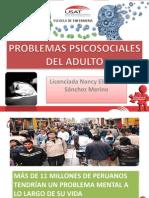EXPOSICIÓN PSICOSOCIALES 2014