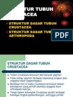 TATAP MUKA 2.ppt