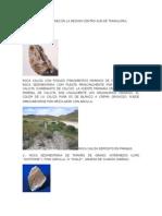 Rocas Comunes en La Region Centro-sur de Tamaulipas
