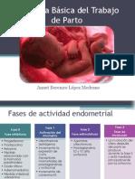 Fisiología Básica del Trabajo de Parto.pptx