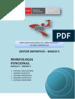 MORFOLOGIA FUNCIONAL - MÓDULO V - SEMANA 4 - G01.pdf