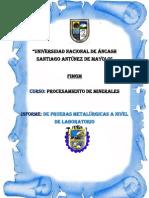 Informe de Pruebas Metalúrgicas