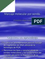Marcaje Sondas PCR