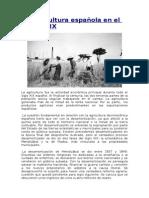 La Agricultura Española en El Siglo XIX