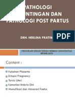 Kuliah Kemajiran Palotogi Kebuntingan Dan Patologi Post Partus