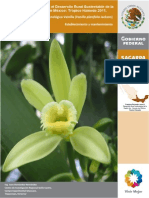 Paquete Tecnológico Vanilla Planifolia