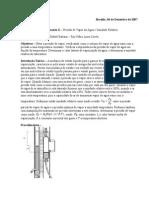 G2_Pressão de Vapor da Água e Umidade Relativaexp10