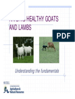 Raising Healthy Goats and Lambs