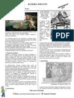 Revisão História ENEM 2014