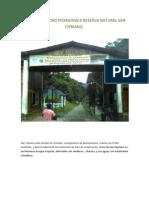 INFORME SALIDAD PEDAGÓGICA RESERVA NATURAL SAN CIPRIANO.docx