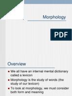 Morphology (1)
