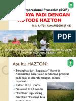 SOP Hazton.pdf