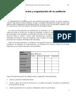 Leccion 8.3.1_Planeacion y Organizacion de La Auditoria