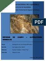 Informe de Campo (Hualgayoc)