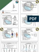 Kinesiología y Estática Parte 01
