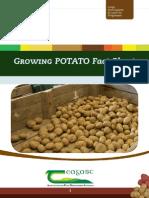 GrowingPotato.pdf