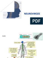 CURS 5. Neuroviroze
