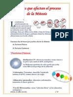 Factores Impiden proceso de Mitosis