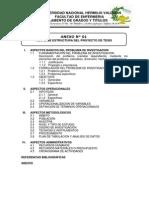 ESQUEMA+DEL+PROYECTO+DE+INVESTIGACIÓN+Y+TESIS (1)