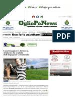 OglioPoNwes - ARTICOLO