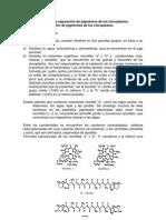 Extracción y Separación de Pigmentos de Los Cloroplastos