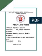 PERFIL CARCELESderede.doc