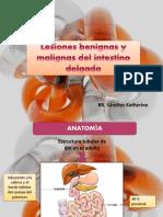 Lesiones Del Intestino delgado
