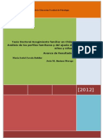 Formato 97-2003 Resultados para SENAME 2012.doc
