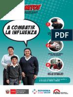 Afiche. Influenza