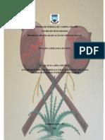 Dissertaç..1NIVALDO.pdf