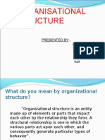 Organisation chart (structure)