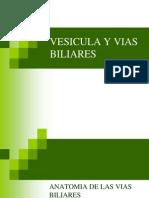 vesiculayviasbiliares-