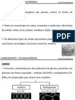2_Carboidratos_polissacarideos.pdf